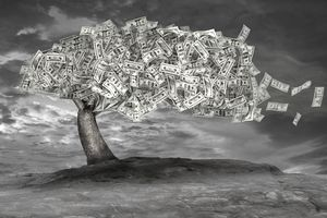 An illustration of a money tree