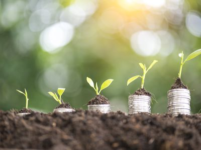 Stacks of coins in the dirt with plants on top