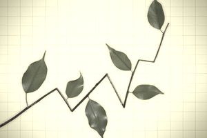 investing line graph showing growth with leaves