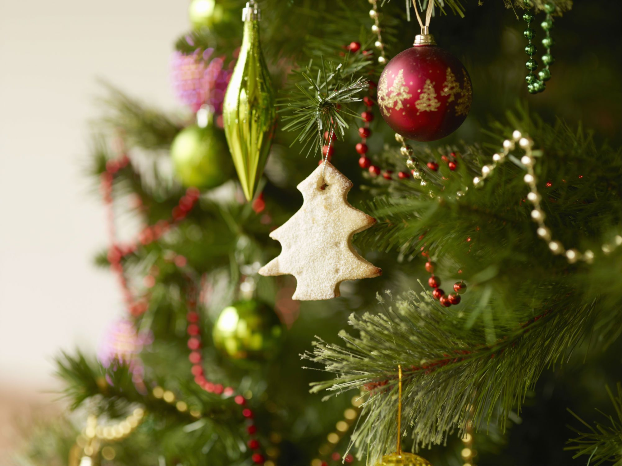 Are you better off buying a fake Christmas tree?