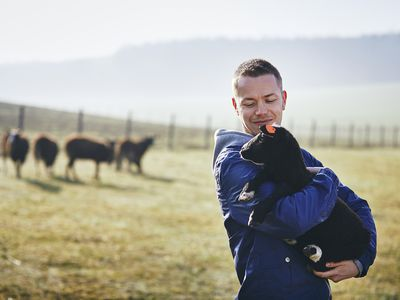 Young farmer holding lamb in a fenced pasture with a herd of sheep