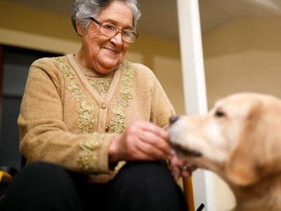 Senior woman with therapy dog at home