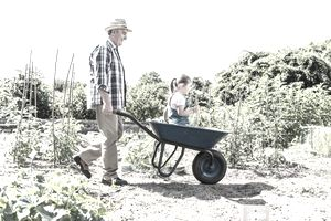 Grandfather enjoys aging in place by pushing wheelbarrow with granddaughter in the garden