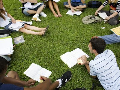 College students studying on lawn