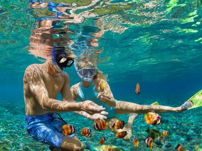 A couple snorkel underwater surrounded by fish.