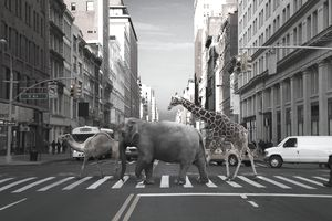 Camel, elephant and giraffe crossing city street