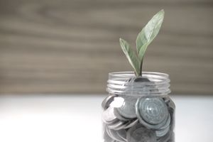 Coin in the bottle and plant growing with savings money put on the wood. Business investment and saving growth concept.