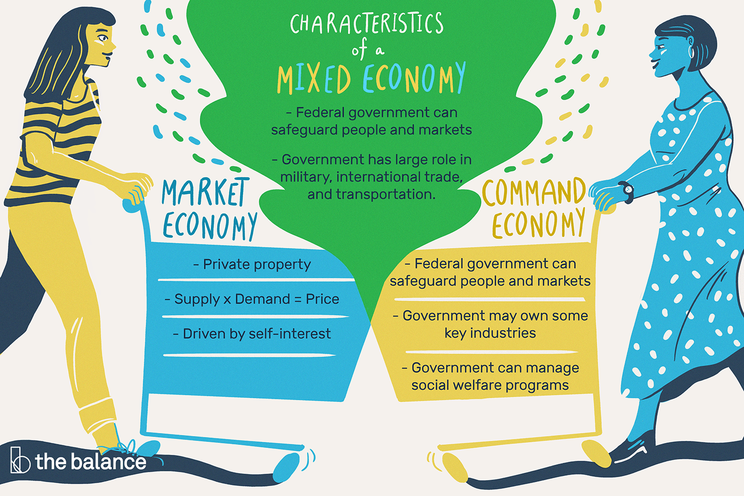 mixed economy with pros, cons, and examples