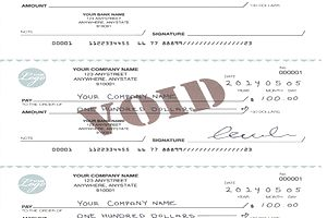 Sample blank, voided, and filled checks