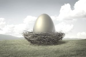 Golden egg perched within nest, signifying the American dream of a healthy financial safety net
