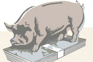 Illustration of a piggy bank on top of a pile of bank notes representing saving money.