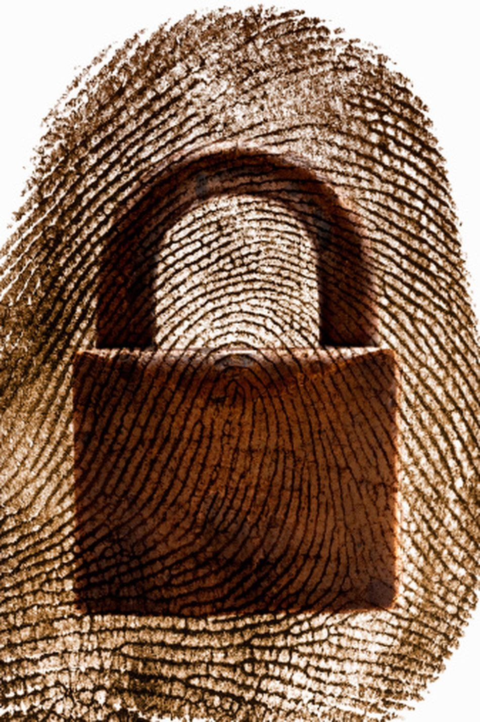 thumbprint with padlock