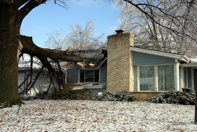 A large tree limb has fallen through the roof of a formerly neat and tidy home.