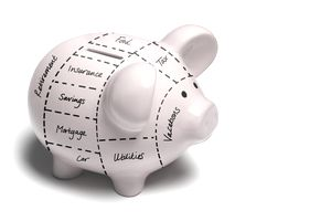 Piggy bank expenses