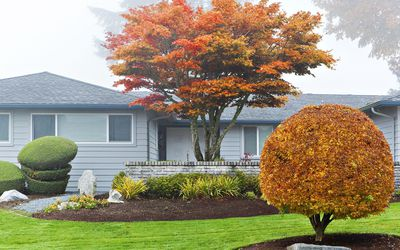 10 Tips To Help A Home In Autumn