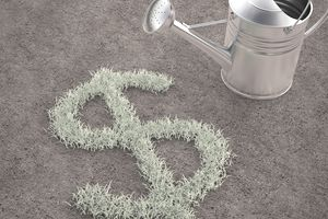 A watering can next to grass shaped like a dollar sign, representing growing money using international small cap funds.