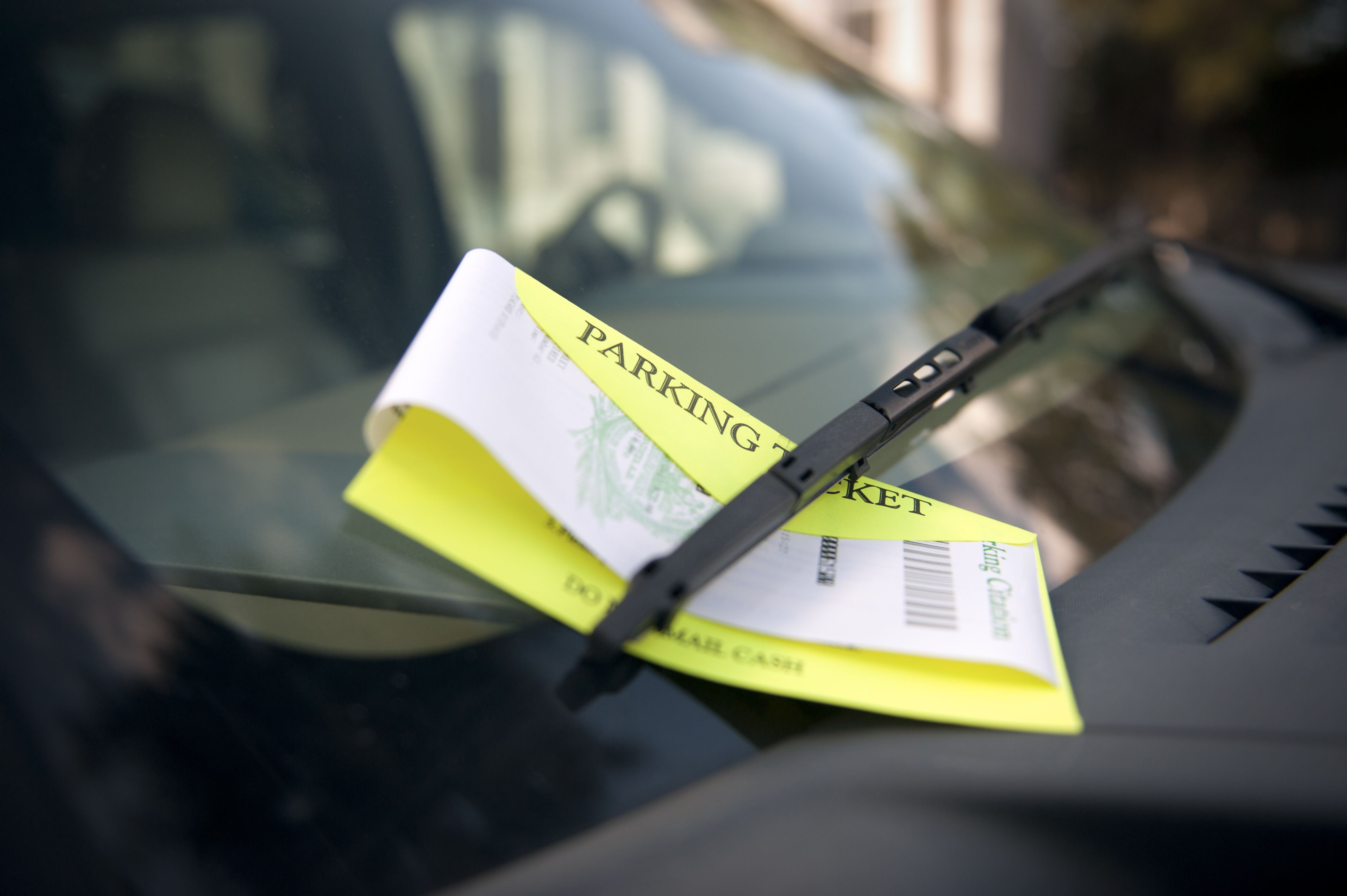 find your ticket by drivers license