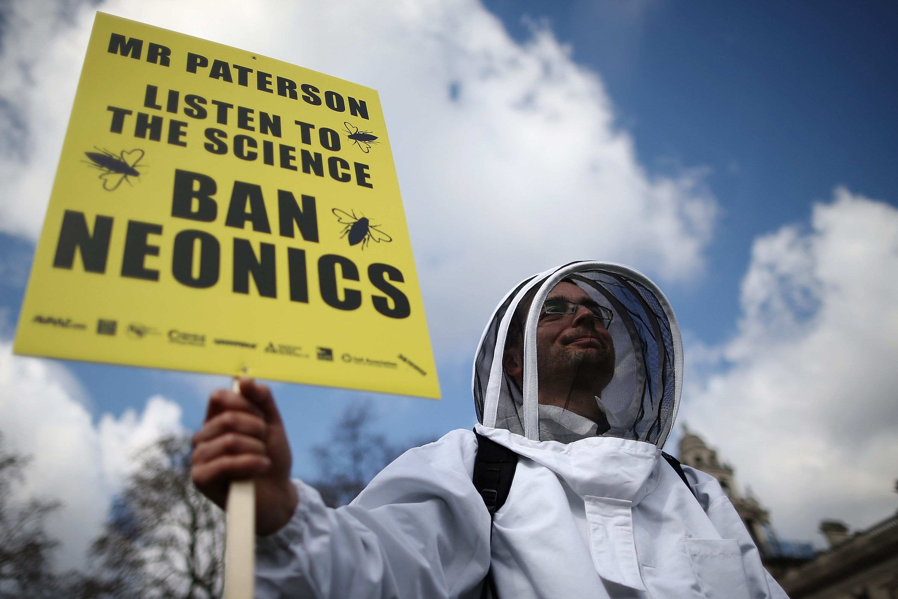 Best Loan Rates >> Bee Colony Collapse Disorder: Facts and Economic Impact