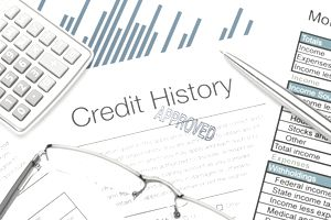 Approved Credit History form