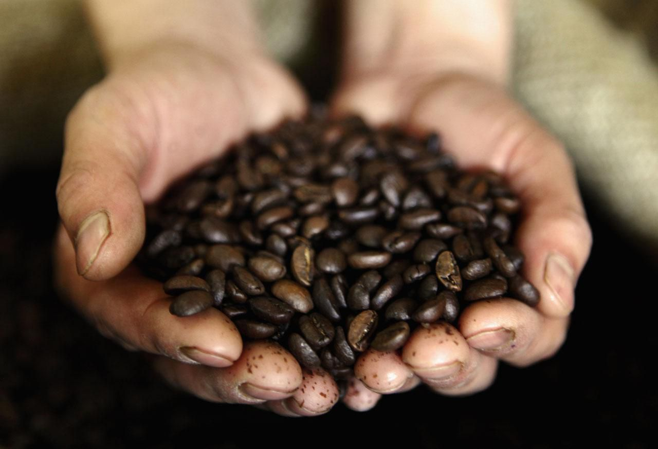 How to you trade coffee futures and options