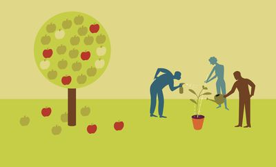 Big and little apple tree as an example of a good return on your investment.