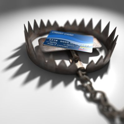 credit-card is bait in a steel jaw trap