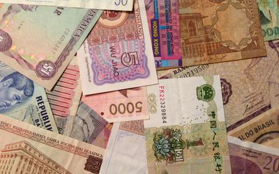 Foreign Exchange Reserves: Definition, Purpose, Guidelines