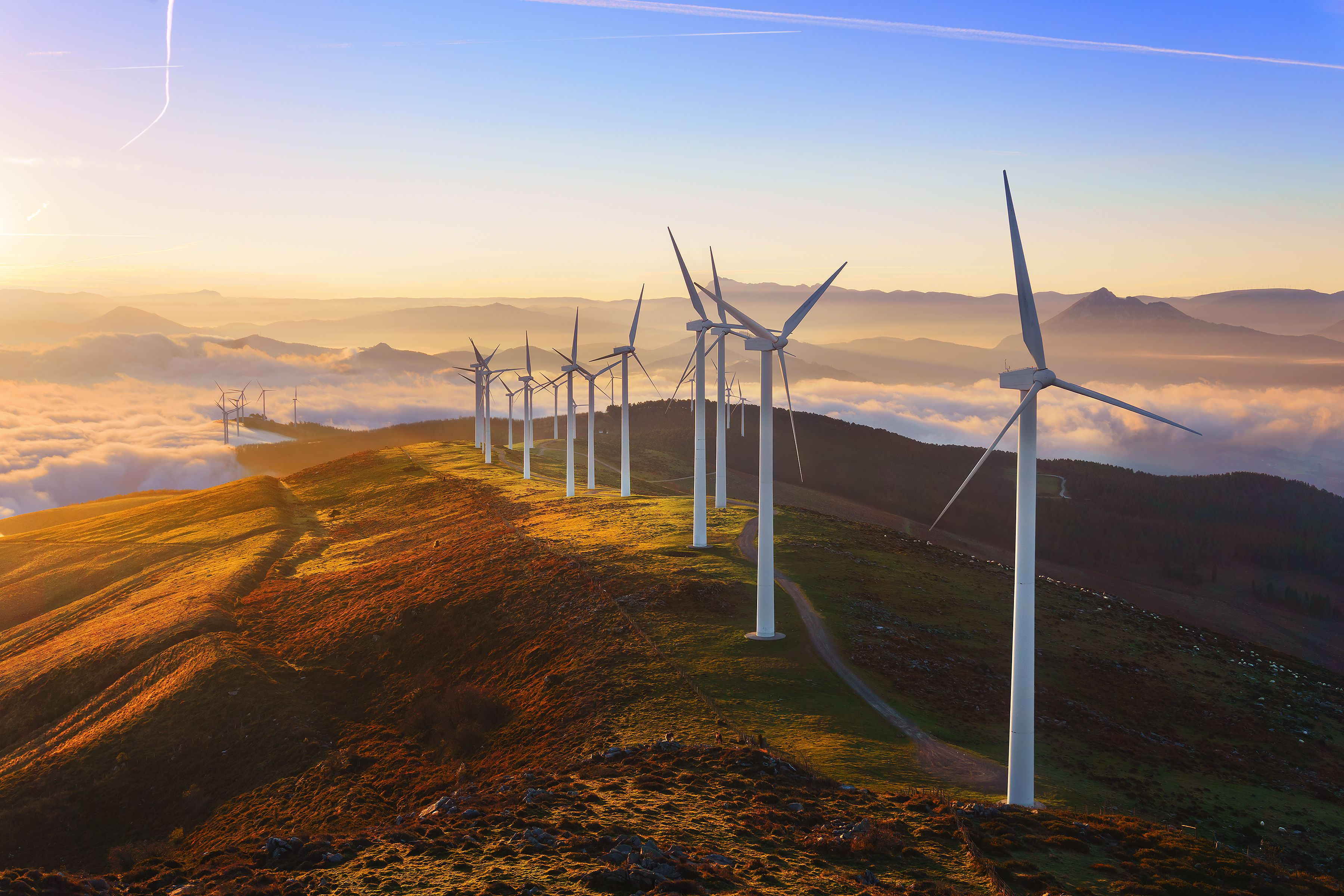 Learn More About Clean Energy ETFs and Which Funds to Buy Now