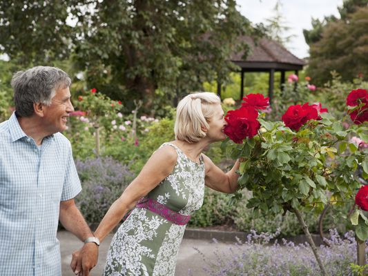 Mature couple in garden of roses