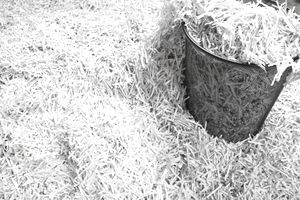 Shredded paper documents and waste paper basket