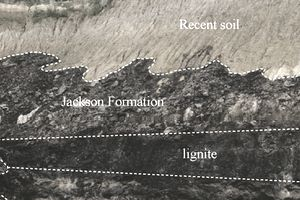 Lignite coal vein in Kentucky.