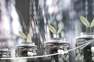 Four coin-filled, graduated-sized jars with seedlings that represent the steps to estimating your retirement needs