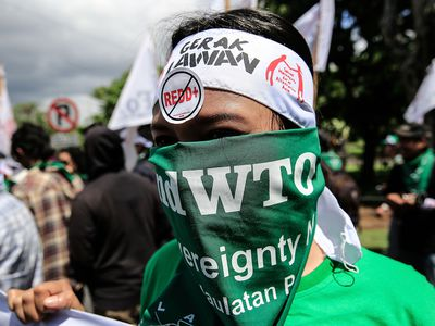 WTO protester
