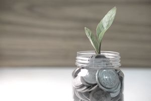 plant growing from glass jar of coins