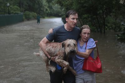Couple leaving flooded area carrying their dog