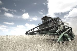 Harvesting Machine in field