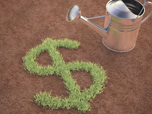 grass shaped like a dollar sign next to a watering can indicating renewable investing
