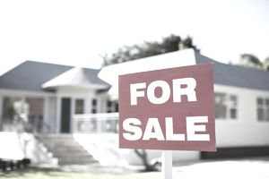Real Estate for sale is an example of what alternative funds are invested in