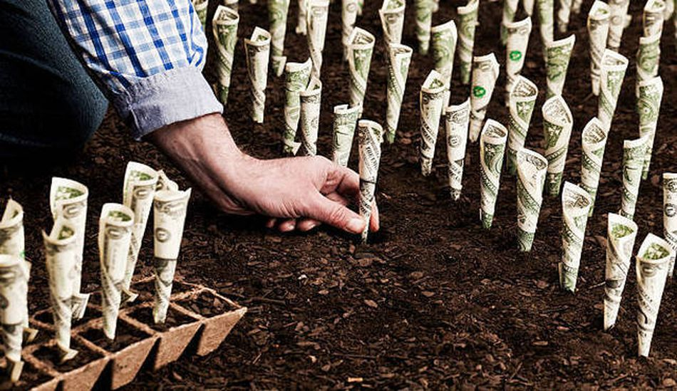 Farmer planting rows of bills to symbolize how investing will make your money work