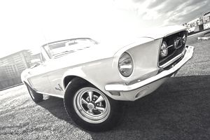 Close up of front quarter of an Antique and Classic Mustang Convertible