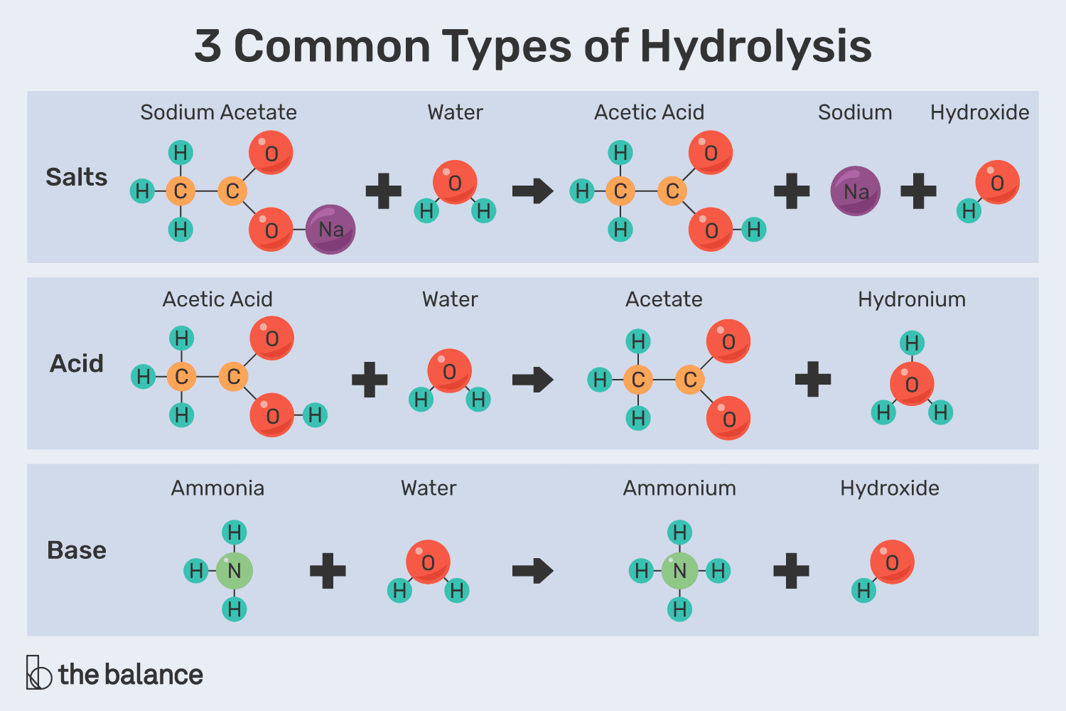 An Explanation of the Process Hydrolysis