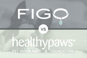 Figo vs. Healthy Paws