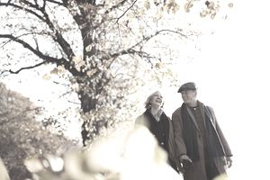 Affectionate senior couple holding hands walking in sunny autumn park