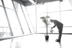 Man watering a money tree as a simile for growing his investments.