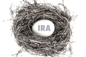 IRA account egg sitting in a nest.