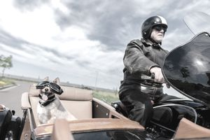 A smiling dog in goggles rides in the sidecar of a man on a motorcycle