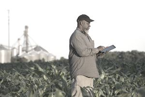 Black farmer with digital tablet in crop field