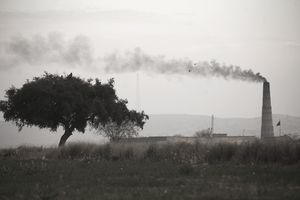 Black smoke billows from a brick smokestack, fouling the sky above a stately oak tree.