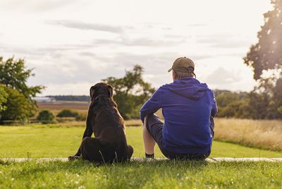 A man and his dog sit in the park and take in the view