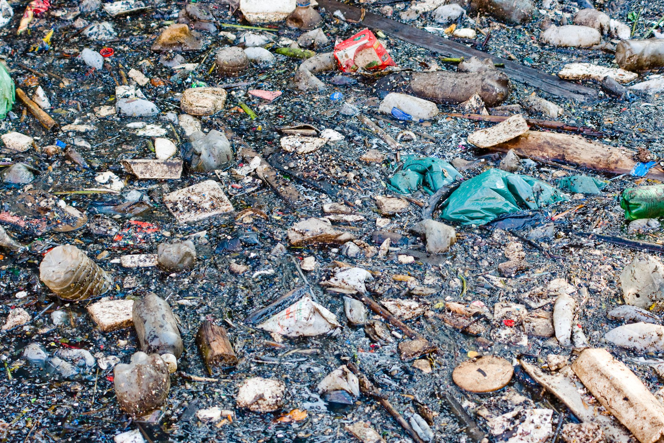 Water Pollution Effects Causes And Solutions